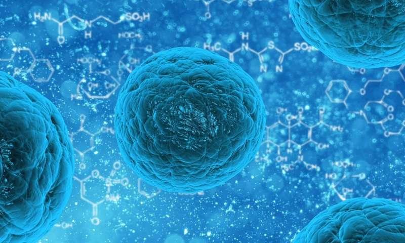 细胞运输用蛋白质剪刀