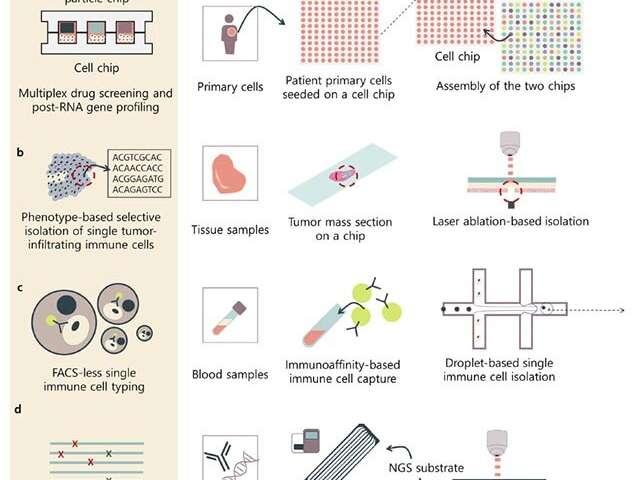 生物芯片的进步使下一代测序技术成为可能