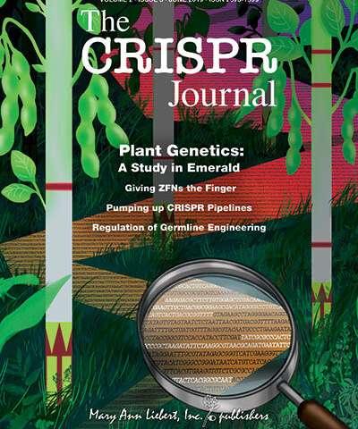 研究人员使用新型的现场准备CRISPR平台来检测植物基因