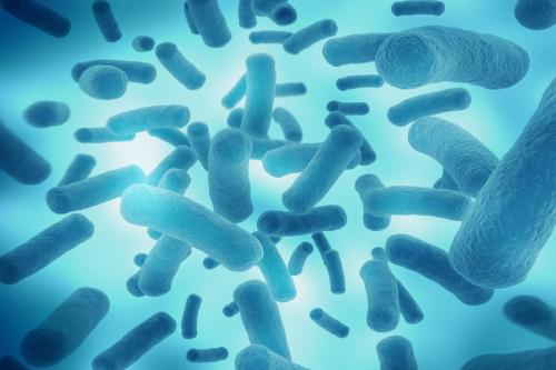 科学家利用新的微生物研究技术打击了污垢