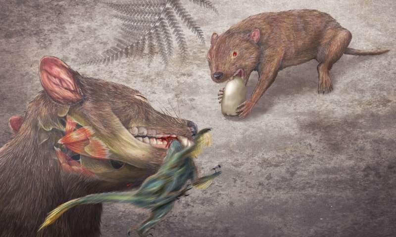 """在所谓的""""恐龙时代""""期间哺乳动物及其亲属茁壮成长"""