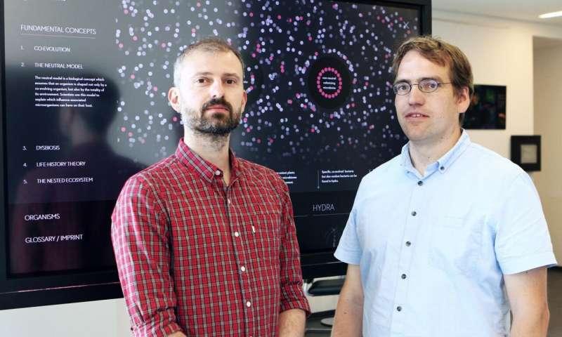团队提出随机模型来解释微生物组成