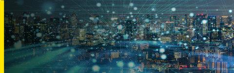 SAP业务软件的支持和应用程序管理服务