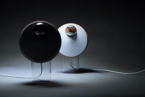 家里有多个智能扬声器吗